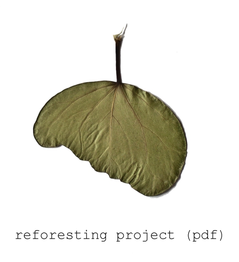 reforesting project