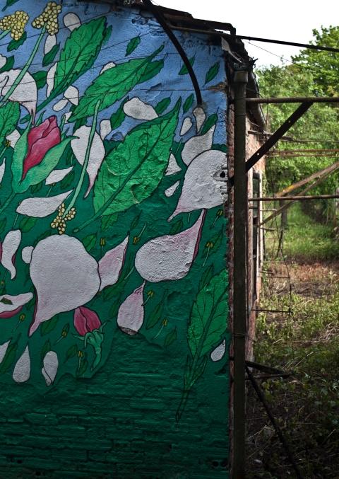 reforestando tromenta manzana 4