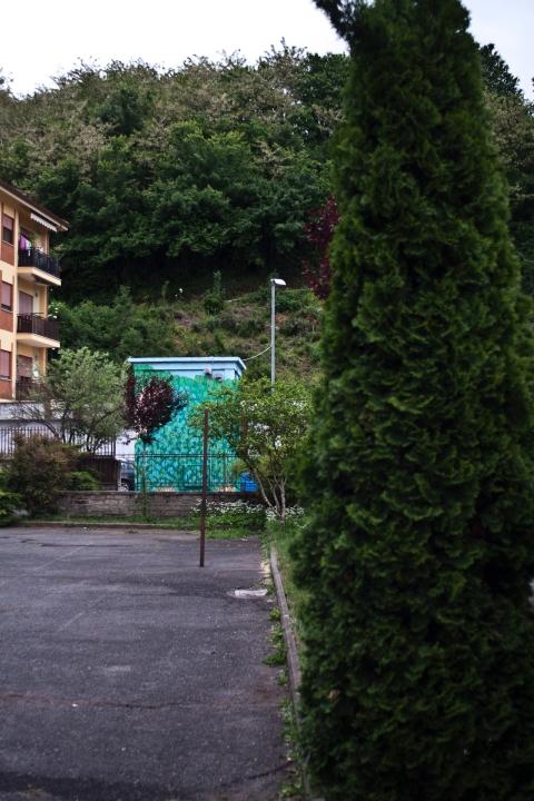 reforestando Valmontone doa oa 6