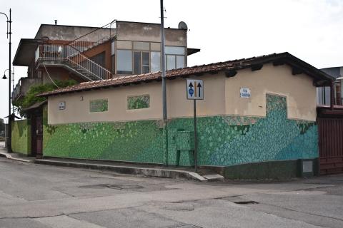 rimboscando terracina doa oa 4