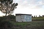 o monte é noso_after reforesting_doa_ocampo