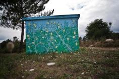 reforestando en la ribeira sacra_ ulex europeaus_doaocampo 1
