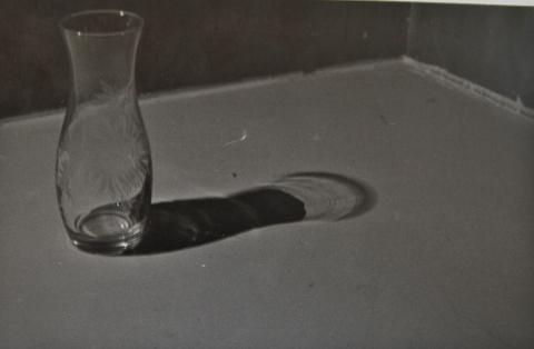 la sombra del vacio_ambiguando _ doa ocampo_