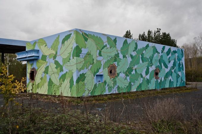 reforest 4653