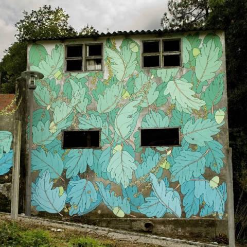 doa oa reforestando en desordes creativas