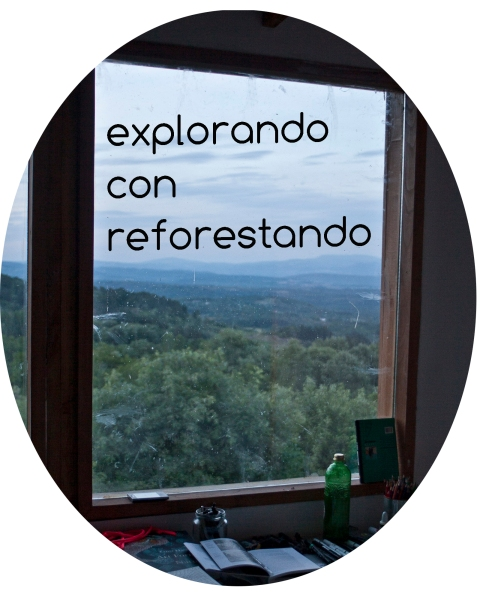 explorando con reforestando copy
