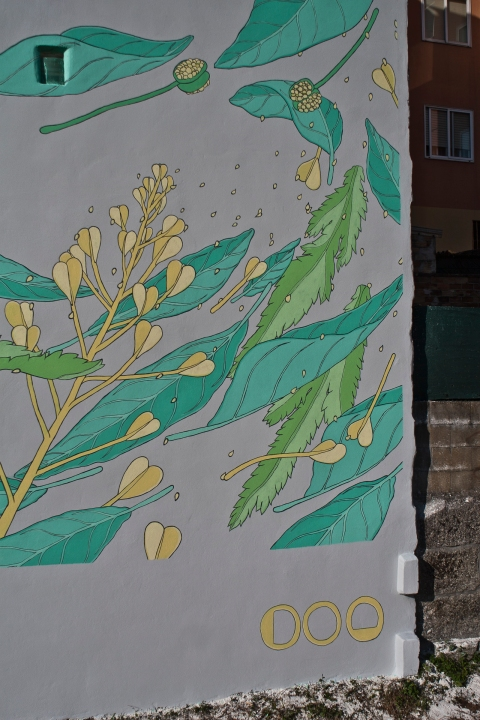 21 doa oa reforestando vigo
