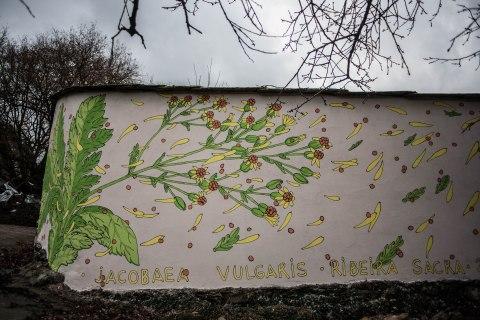 reforestando-ribeira-sacra-doa-ocampo-paradela-2