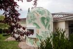 reforestando stevia rebaudiana doa ocampo 1