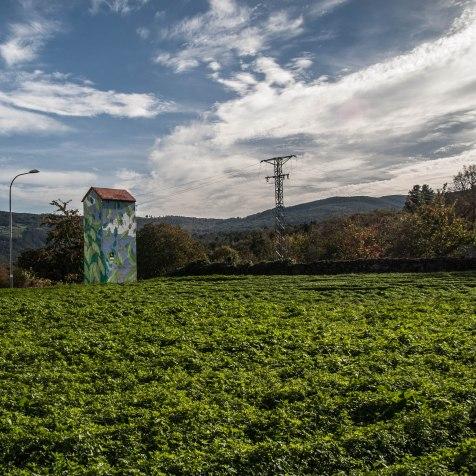 52-reforestando-